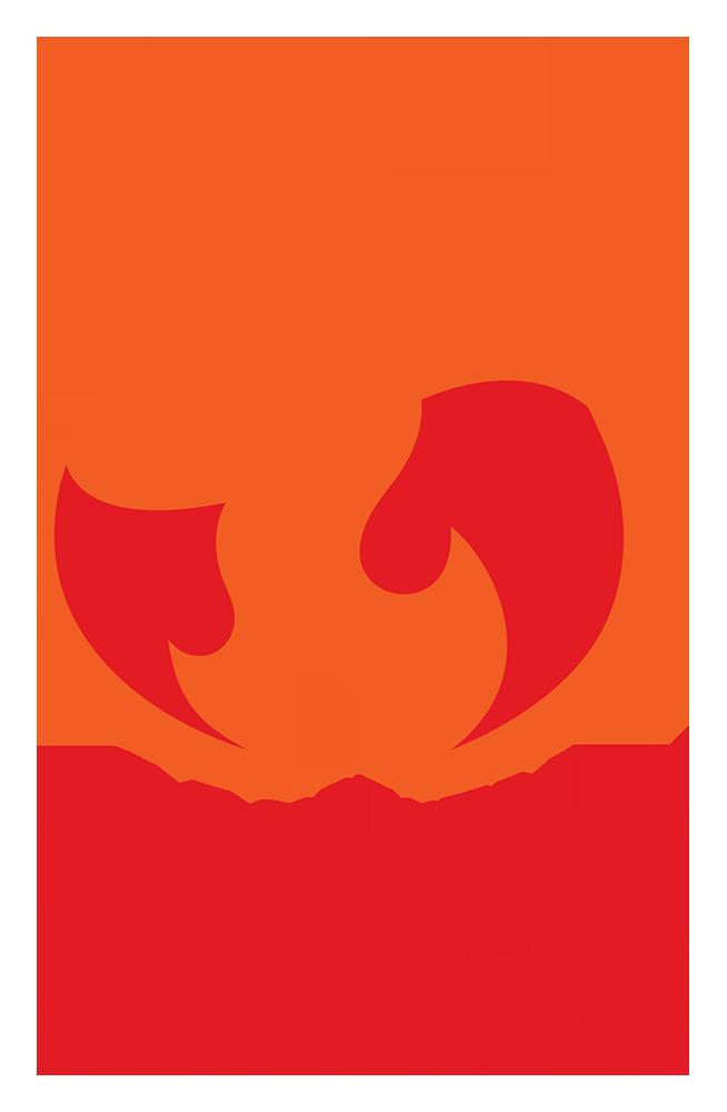 Caswell Firesafe logo